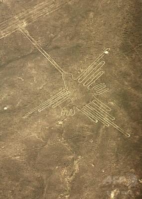 ナスカの地上絵の画像 p1_6