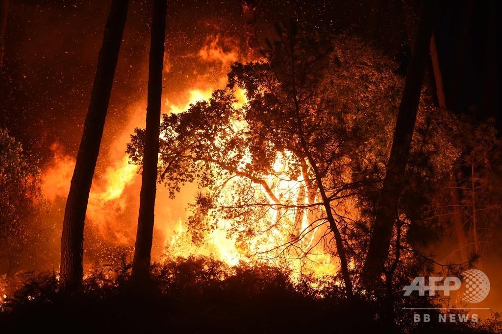 フランス南西部で森林火災 熱波でさらなる火事に警戒