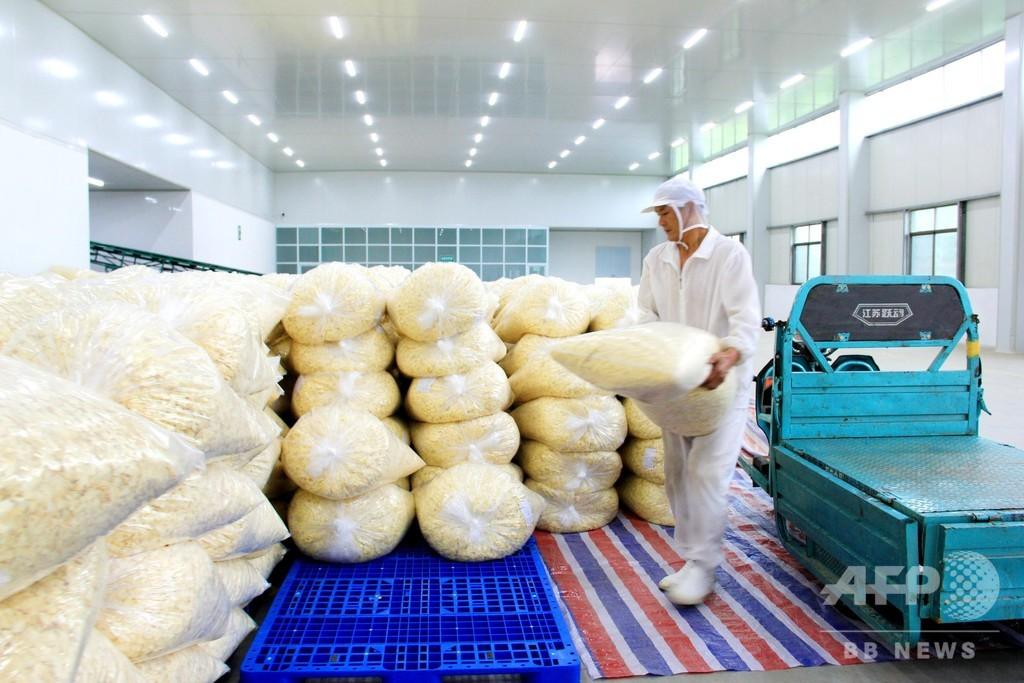 日本にも輸出の脱水野菜、加工工場が貧困解決の一助に 安徽省