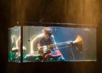 どんな音聞こえる? デンマークで水中コンサート