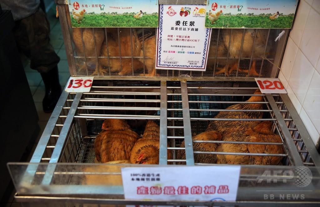 中国の鳥インフル、死者は前年比約3倍