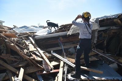 ハリケーン「マイケル」の死者30人に 米フロリダ州で停電続く