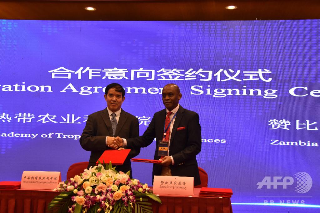 アフリカ諸国、中国との熱帯農業技術の協力強化に期待