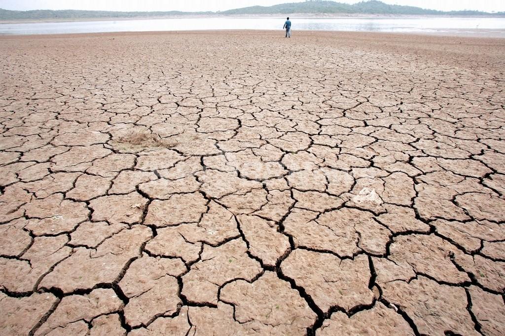 地球の広範囲で大干ばつの恐れ、米研究