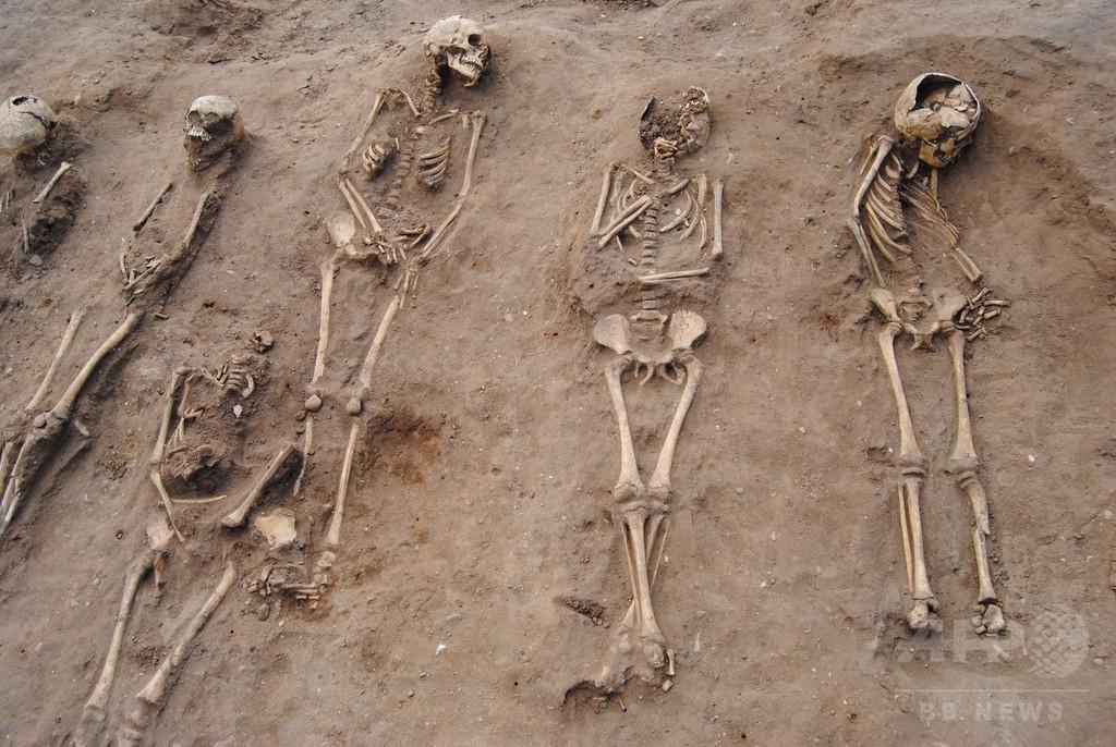 黒死病犠牲者の共同墓地、中世の修道院で発見 英