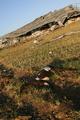 ガザ攻撃によるパレスチナ側の被害は死者1330人、負傷者5450人