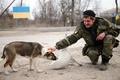 イヌとネコ、前線挟み兵士らの「最良の友」 ウクライナ東部紛争