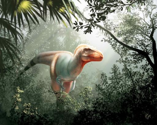 【特集】古代生物図鑑~太古に生きた奇妙な動物たち