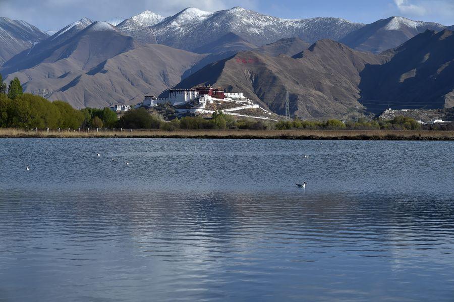チベット自治区、メーデー連休で自然風景の観光名所を再開 中国