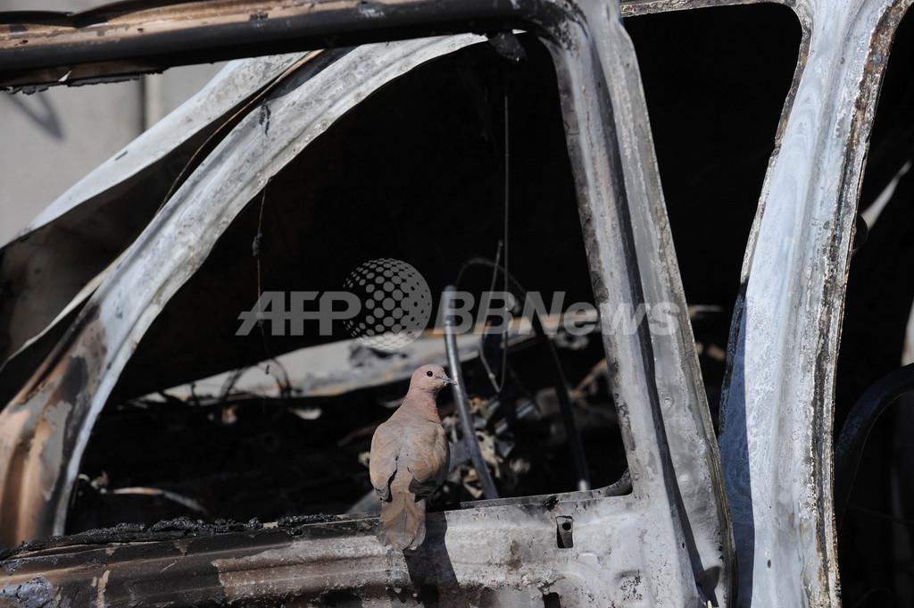 米牧師らのコーラン焼却に抗議、抗議行動で死者 アフガニスタン