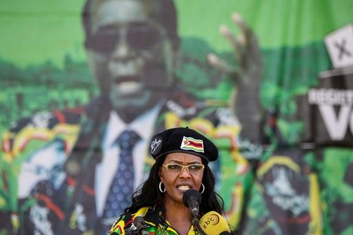 失脚したムガベ前大統領の夫人、象牙密輸で捜査 ジンバブエ