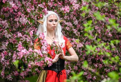 モスクワで桜が見頃に、女性たちが「SNS映え」狙って写真撮影