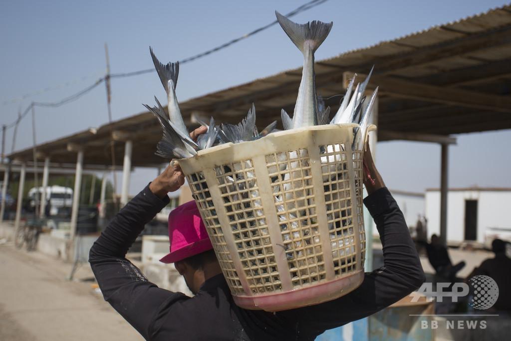 電力不足のイラク、GCCと協定 クウェートから送電線 500メガワット輸入へ