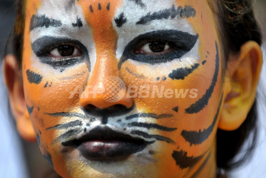野生生物保護団体、トラにふんしてデモ インドネシア