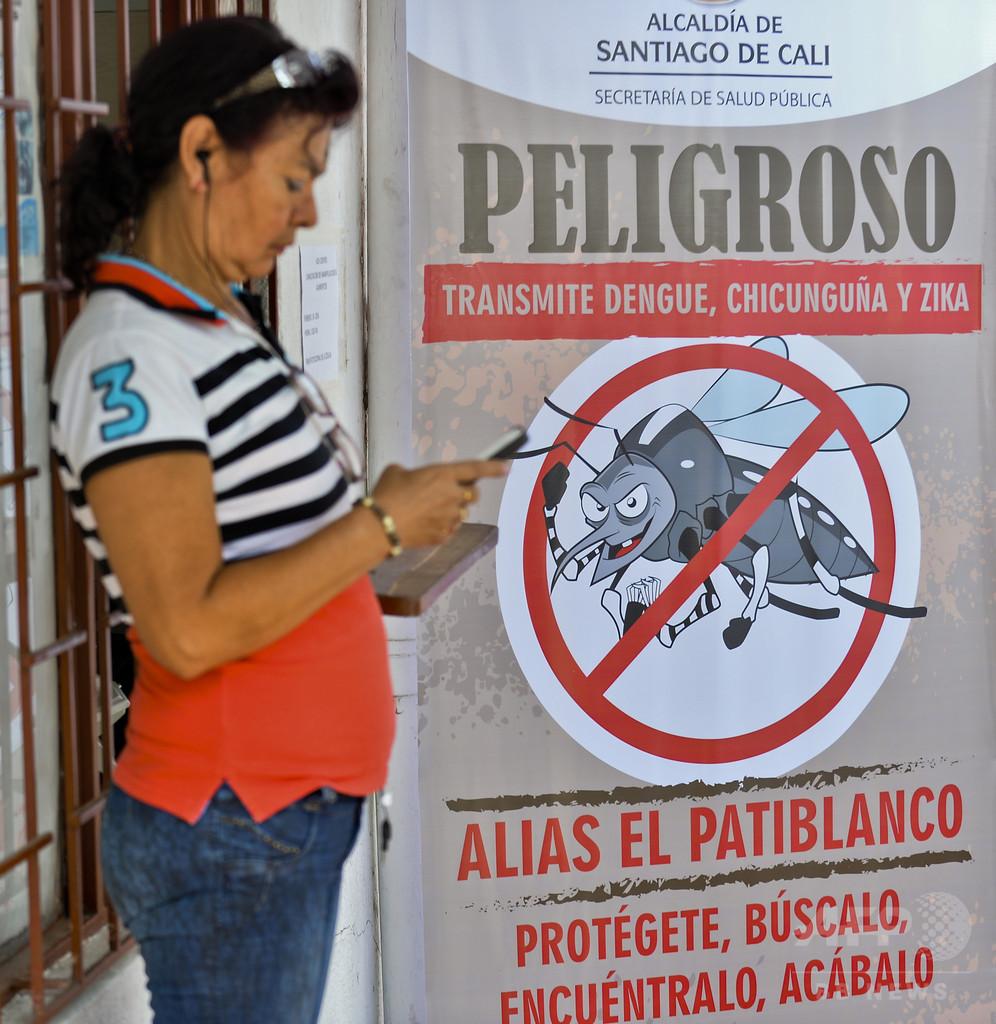 ジカ熱、妊娠初期の感染で小頭症リスク最大13%に 研究