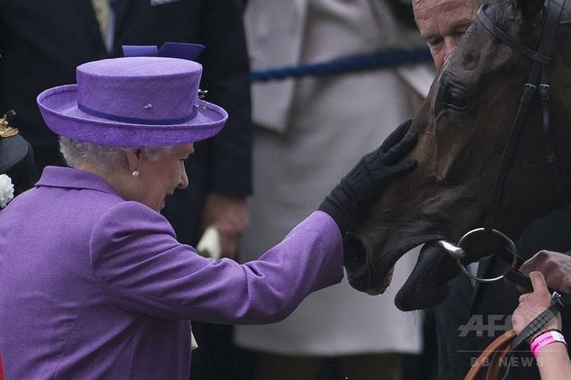 英エリザベス女王所有の競走馬から薬物の陽性反応