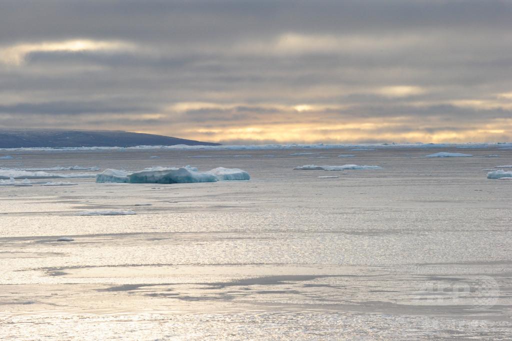 北極海公海での漁業を当面中止、日本など10の国・地域が合意
