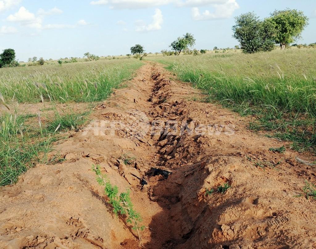 アフリカの砂漠化を防ぐ「緑の壁」プロジェクト、効果が表れるのは数百年後?