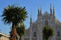 ミラノ大聖堂の目の前にヤシやバナナの木、スタバ後援企画に反発