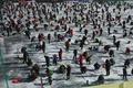 恒例のヤマメ祭り開幕、ヤマメ170トン放流 韓国