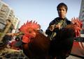 中国、鳥インフルで女性死亡 今年4人目