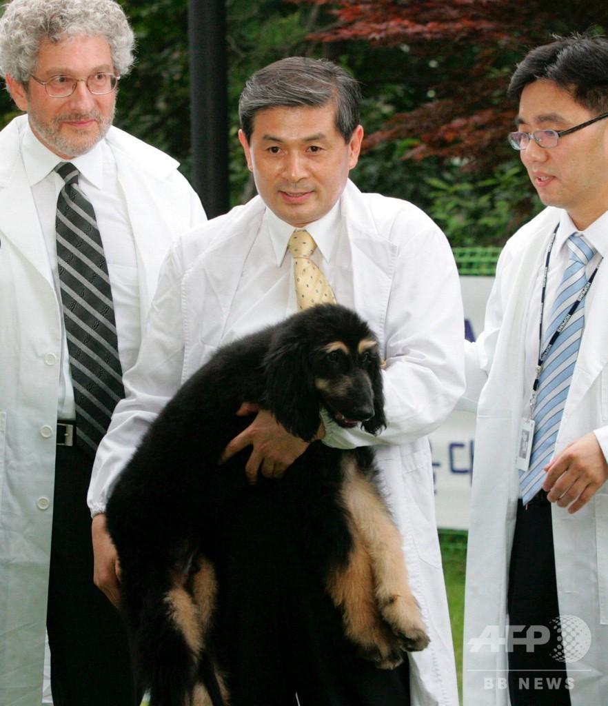 中国で商業化されるペットのクローンは、技術の乱用だ