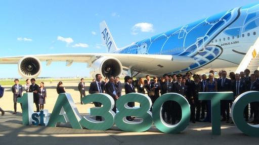 動画:ウミガメが空を飛ぶ? ANAにエアバスA380の1号機 5月から運航