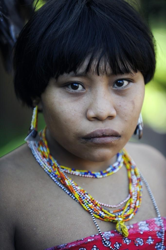 アマゾン先住民、抗生物質耐性持つ遺伝子約30種を確認