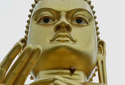 黄金の巨大仏像にスズメバチの巣、スリランカ世界遺産