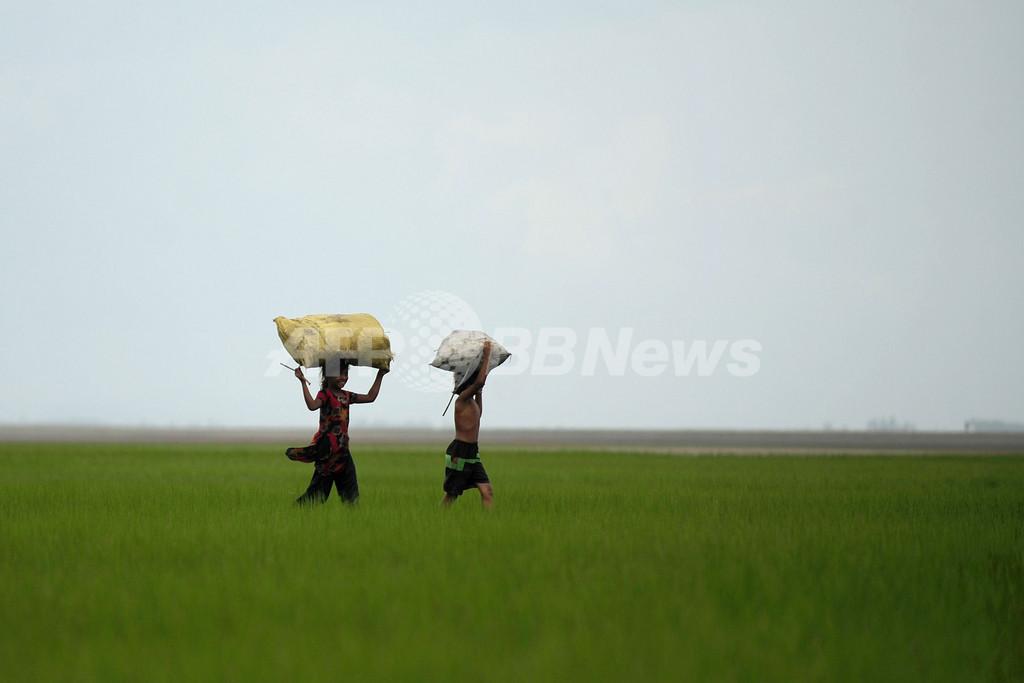 バングラデシュ農村部の風景