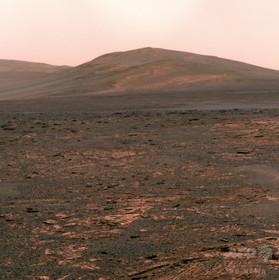 火星に似た環境下でジャガイモ生育に成功、ペルー