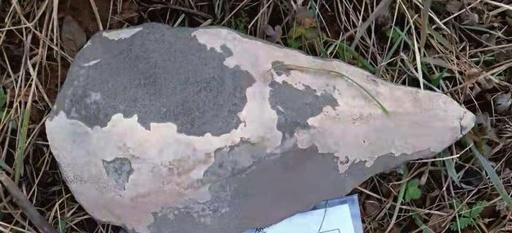 10万年前?の手おのを発見 中国・四川省の青蔵高原