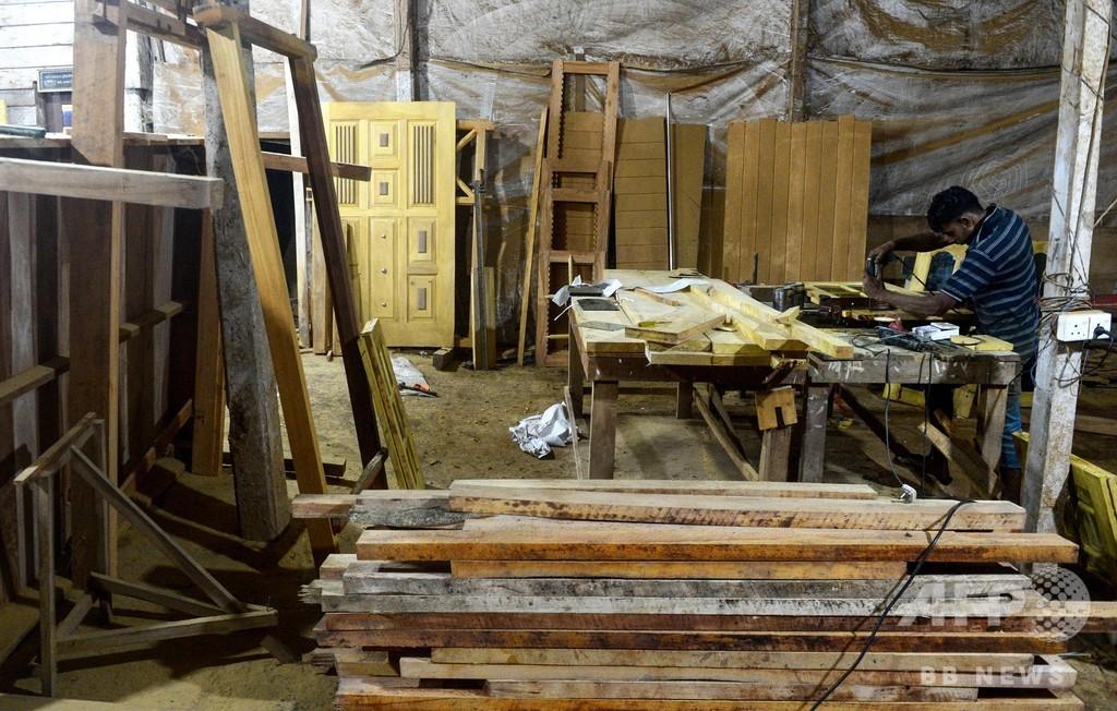 森林保護でチェーンソー輸入禁止、製材所も5年以内に閉鎖へ スリランカ