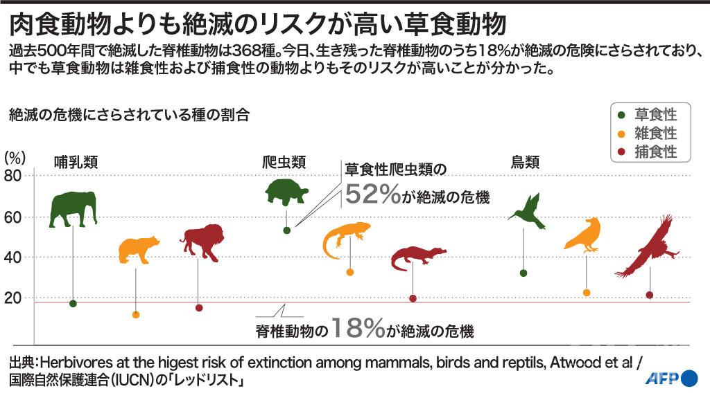 草食動物、肉食動物より絶滅リスク高い 研究