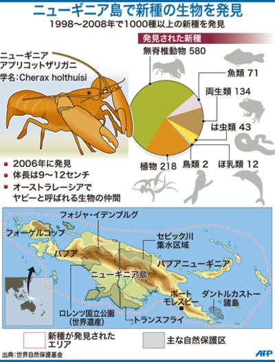 【図解】ニューギニア島で新種を発見