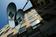 「ブルックリンマシンワークス」と「エレメント」がコラボ、発表会にファレルら登場