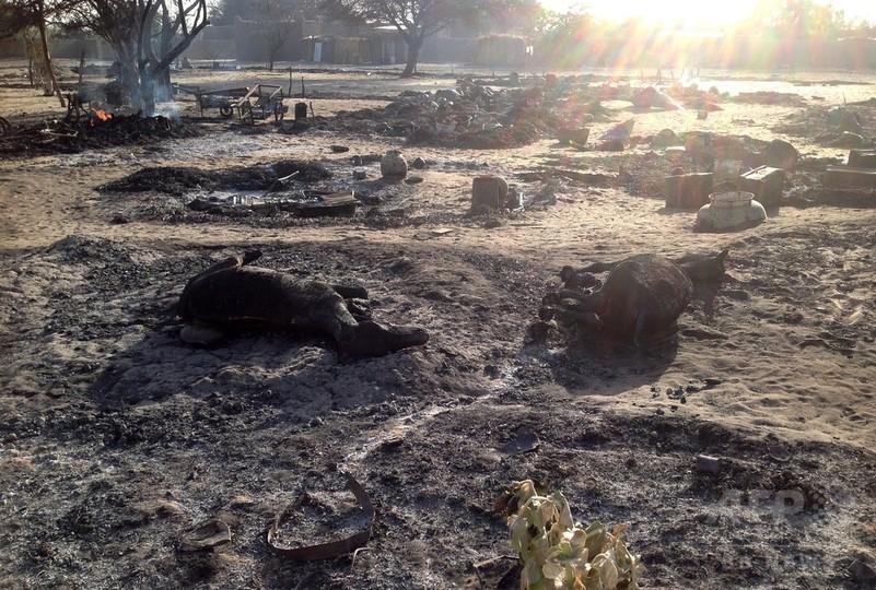 カメルーン軍、ボコ・ハラムの86人を殺害 1000人以上拘束