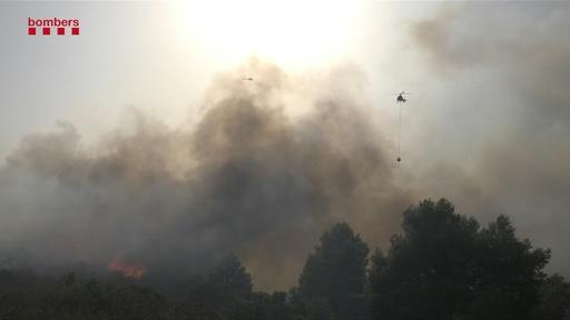動画:欧州熱波、スペインで森林火災 強風で急速に延焼 現地の映像