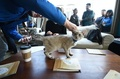 全米初の猫カフェに1日500人殺到、NYで4日間だけ開店