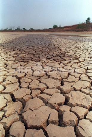 ブラジル北東部で50年ぶり大干ばつ、水争いで1日1人死亡
