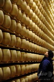 「パルミジャーノ・レッジャーノ」、17年生産量は過去最高 伊