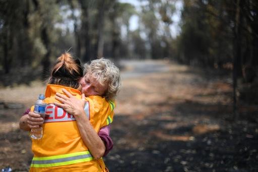 豪農家、森林火災で弱り目にたたり目 農地・家畜の被害甚大