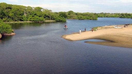 ワニに襲われ死亡か、英国人記者の遺体発見 スリランカ
