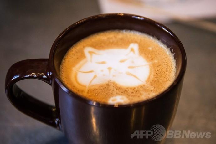 NYマンハッタンに「猫カフェ」、期間限定オープンで大行列