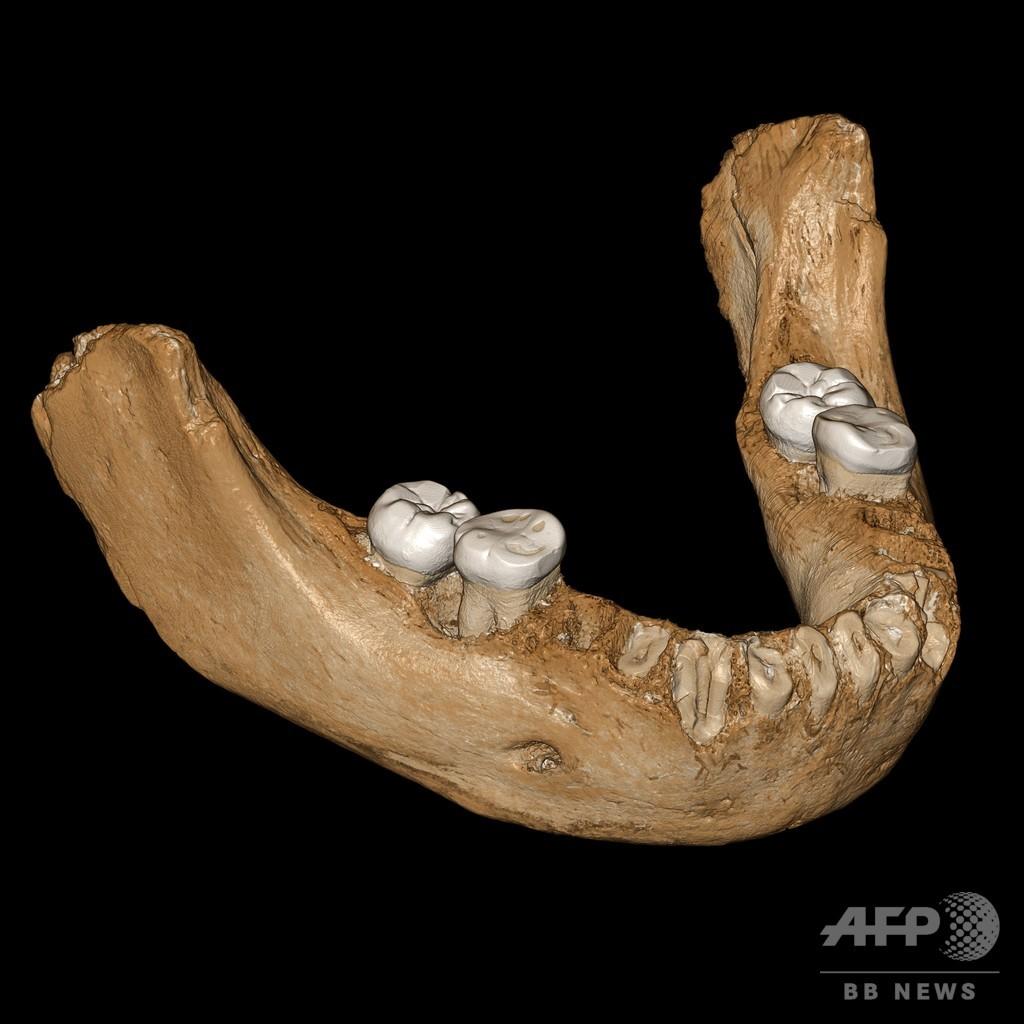 デニソワ人のDNAの謎解明か 16万年前にチベット高地に適応 研究
