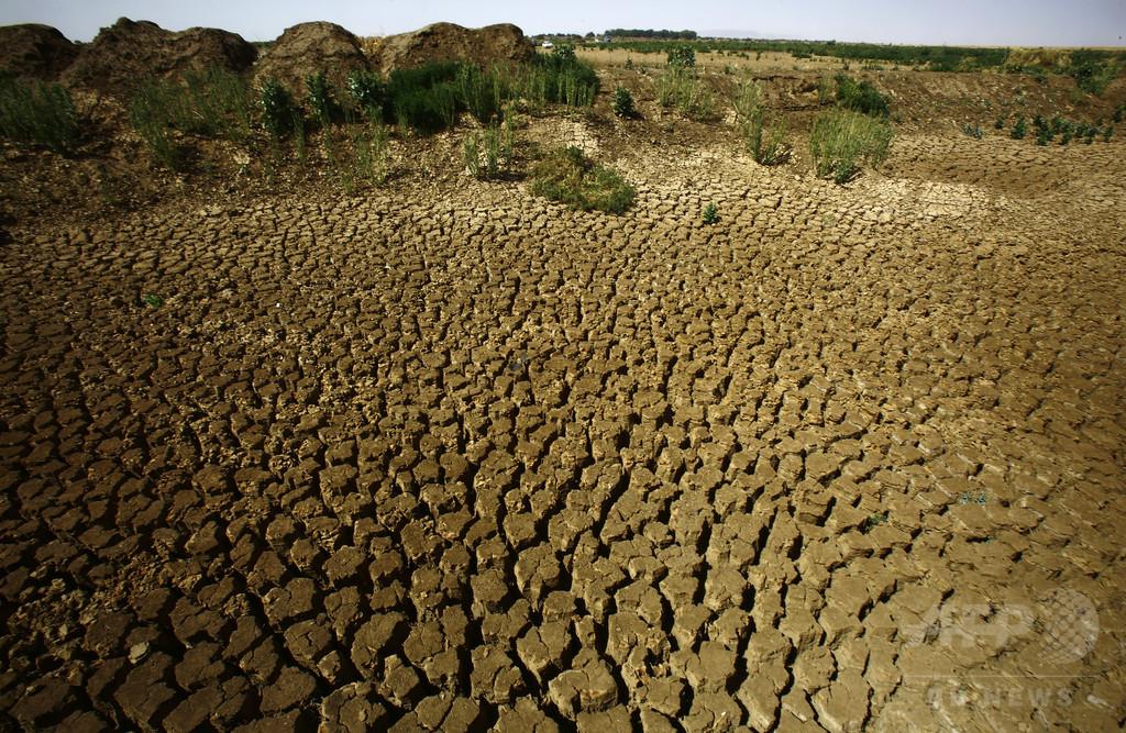 水不足の地域で暮らす子ども、2040年までに6億人 ユニセフ