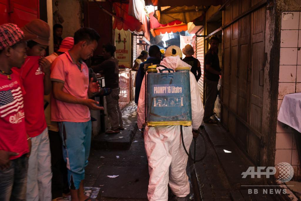 北京で肺ペスト発生 感染力強く致死性も