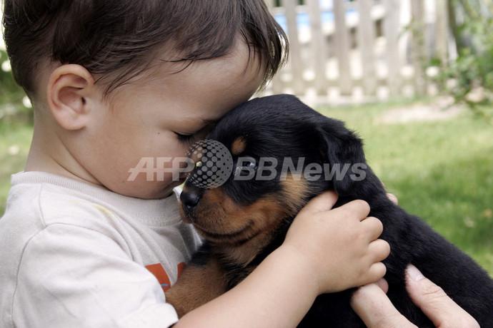 「犬と一緒に育つ赤ちゃんは病気に強い」、研究