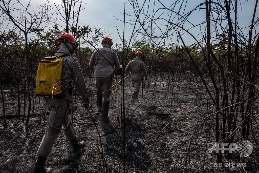 アマゾン火災、野焼き禁止も新たに1500件 大統領は「欧州が