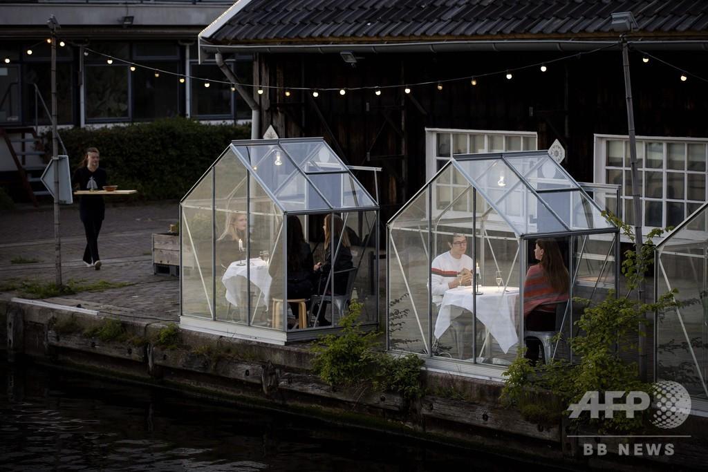 外食は小さなガラス温室の中で、コロナ時代の飲食店再開へ提案 オランダ